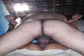 سكس في مزرعة