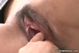 Sex animal pornoقصص سكس محارم