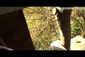 مشاهدة صورسكس متحركه لرجال مع انثي الحيوانات